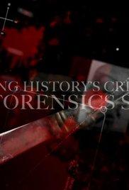 Hvatanje povijesnih zločinaca: priča o forenzici - poster