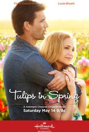 Proljetni tulipani - poster