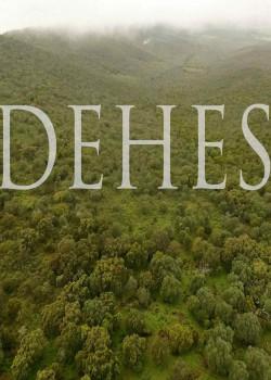 Dehesa - poster