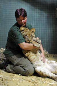 Bebe iz Zoo vrta - poster