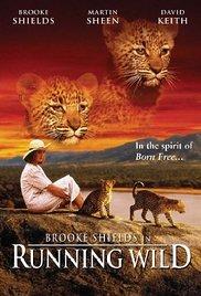 Divja Afrika - poster