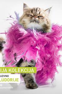 Životinjske ludorije - poster